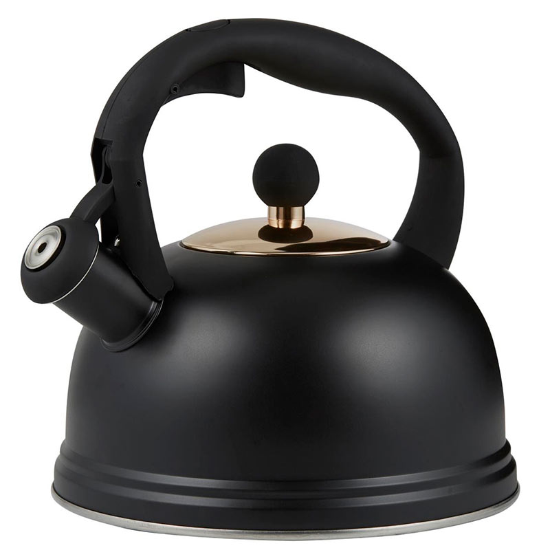 Чайник наплитный со свистком Typhoon Otto